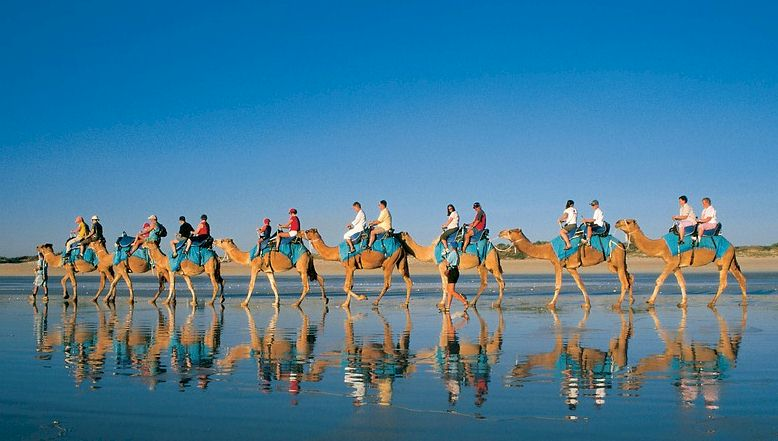 australia-camel-ride-vacation